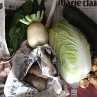 いろいろ野菜