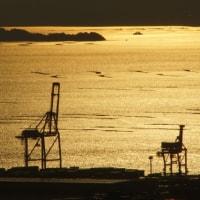 縮景園と広島湾夕景 170214、15