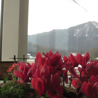 勝さんのリビングから角田山を眺める