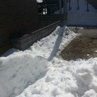 自転車置き場  除雪