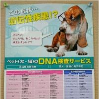 遺伝性疾患検査の受付スタート!