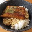 外食 39日目…回転寿司
