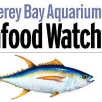 漁具や資源の豊かさが,より効率的漁業のカギとなる   (2)