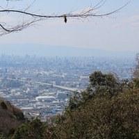 奈良・三重支部 第一弾イベント ~暗峠を歩く 奈良から大阪へ~