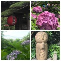 鎌倉のあじさい寺へ   @長谷