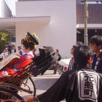 丸山華まつり 花魁道中 榎 由里絵 2016・11・13