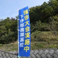 ◆ 強歩大会