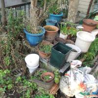 ガーデン整理整頓