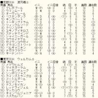 「ジャパンC」未掲載10頭のカバラ暗示&WIN5対象レースのカバラ暗示付き出馬表