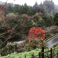 千葉県講師会主催 オタクフォローセミナーのおしらせ