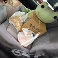 ごはん家への道〜色々仕入れ #Gohan #ryouri #ご飯 #料理 #kaeru #frog #カエル
