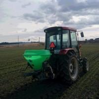 麦に追肥作業