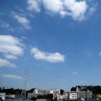 昨日の蒼天