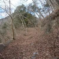檜原村ふるさとの森とリハビリ