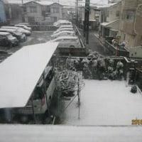 2016.11.23(水) OPDES競技会 in 秋ヶ瀬三ツ池グランド