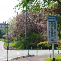間木ノ平グリーンパーク(青森県新郷村)