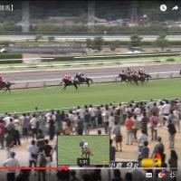 小倉2歳ステークス(2016/09/04)の事前予想