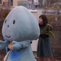 筑後七国観光フェスタ こっぽりーと橋本あかね 2017・3・18