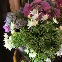 6月21日の草花舎