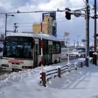 真冬日が続く市街地