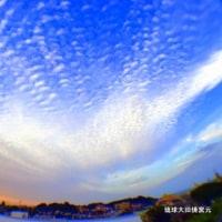 琉球大田焼窯元家族の写真作品 ☆高校3年の孫娘撮影 空