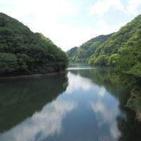 山野草の季節(3)