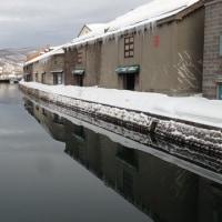 小樽の街は 雪山も無く スッキリ