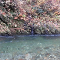 澄んだ渓谷の流れ