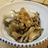 牡蠣フライと菜の花の辛子醤油和え♪ 今日のオット弁