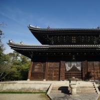 妙興寺に祀られる仏像の力強さ