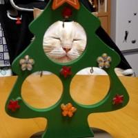 クリスマス…。