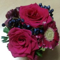 可愛い花を頂きました