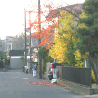 11月、町内一斉道路清掃!