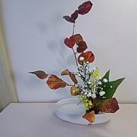 今日のいけばな*盛花の生け方と寸法