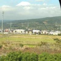 柿の葉寿司と富士山 Kakinoha-zushi and Mt.Fuji