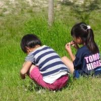 17/5/7 U12 全日リーグ第3節
