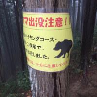 高水山トレイルレース試走!