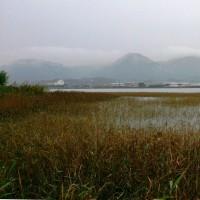 2016年10月28日:〈津屋崎の四季〉1165:秋雨降る「津屋崎干潟」