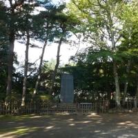 下根子桜(10/20)