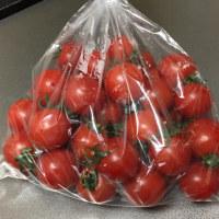 セレブなトマト