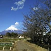 昨日のつづき。おまけの富士山