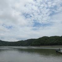 6月25日の散歩 梅雨の天気です