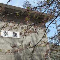 桜と川面が絶景の潮駅