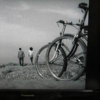 (162)晩春/1949年/松竹  ★映画はギャグだ!