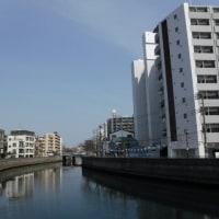 大岡川(横浜市)