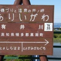 TK33有井川(高知県)  ありいがわ
