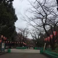 上野で展覧会