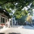 韓国人留学生の変化。日本に来る新しい波