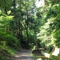 エッセイ わたしの京都散歩(その1)