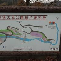 白猪の滝から白猪峠 (11月30日)